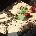 Kleintier-Sarg mit roter Rose