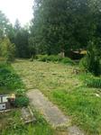 Pflege des naturbelassenen Tierbriedhofs in Baden-Baden