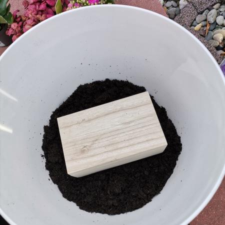 Tierasche in Urne wird in den Blumentopf als Zimmergrab gelegt