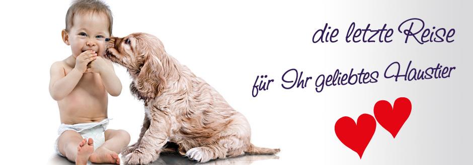 Tiertrauer und Haustierkremierung Rastatt und Mittelbaden